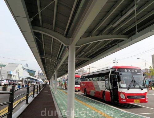 광주송정역↔담양 세계대나무박람회 셔틀버스시간표